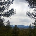 Florissant CO Sold Land